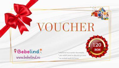 Card Cadou 120 Lei cu preț PROMO de 100 lei,carduri cadou sarbatori, card cadou produse copii, voucher magazin online copii, voucher valoric jucarii