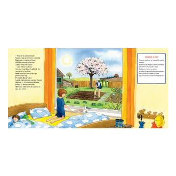 Cum e vremea astazi? - Chit-chit citeste, colectia chit chit citeste, editura casa, carte despre vreme copii, carti educative copii