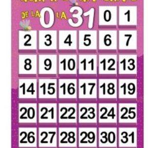 Plansa – Numerele narurale de la 0 la 31