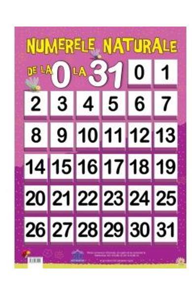 Plansa - Numerele narurale de la 0 la 31, plansa numerle naturale, plansa cu numere, plansa cu numere 0-31, invata cifrele